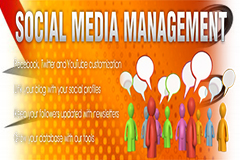 Advertising and Media Management