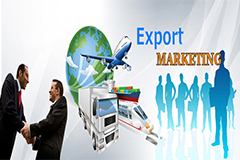 Export Import Policy Procedure & Documentation