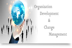 Organizational Development and Change Management
